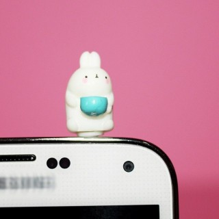 Plug Dust Molang