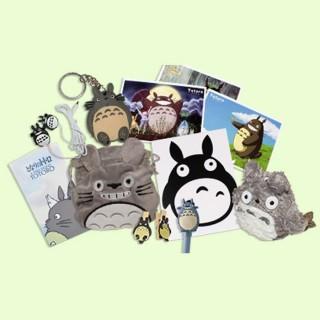 Kawaii Box Tamtokki : Totoro Format Maxi