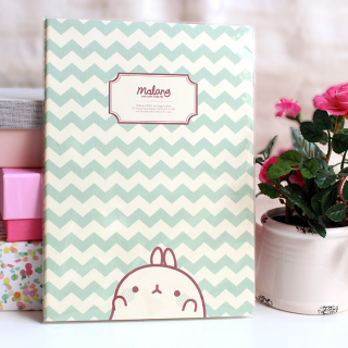 Carnet Molang Mint (Grand)