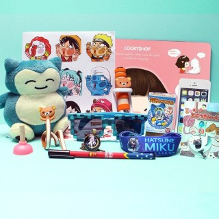 MEGA Kawaii Box Tamtoki Geek Girl