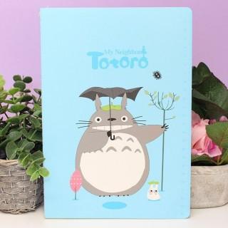 Cahier Totoro Color