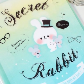 Pochette plastique A4 Secret Rabbit