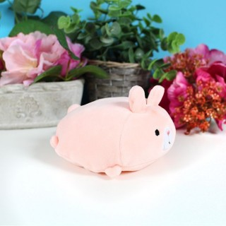 Peluche Petit Animal Kawaii