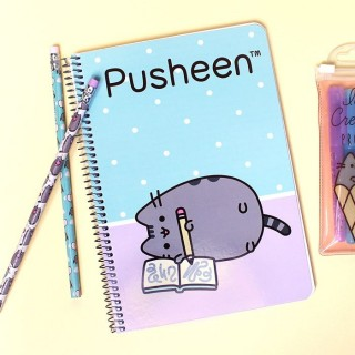 Cahier Spirale Pusheen The Cat Dessin