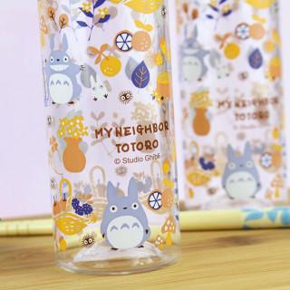 Petite Bouteille D'eau Ghibli - Totoro  sur Tamtokki Boutique Kawaii